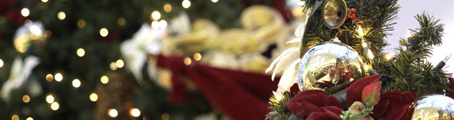 バンクーバークリスマスツリーの写真