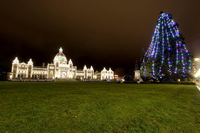 「大きなツリーと州議事堂」