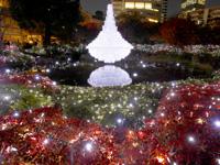 六本木ヒルズクリスマスイルミネーション